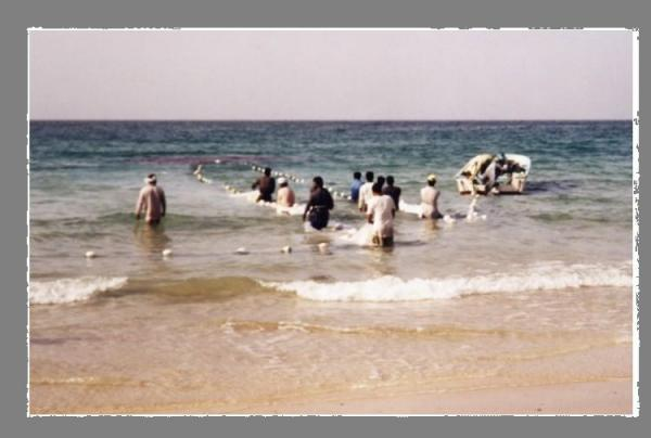 Pêche Oman .3