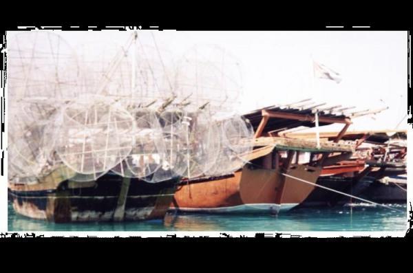 Pêche Abu Dhabi 9